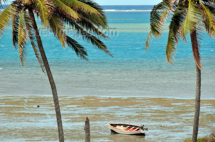 rodrigues19: Anse Mourouk, Rodrigues island, Mauritius: coconut trees, fishing boat and the waters of the lagoon - photo by M.Torres - (c) Travel-Images.com - Stock Photography agency - Image Bank