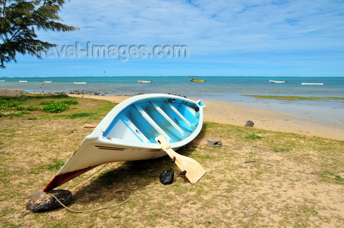 rodrigues25: Anse Mourouk, Rodrigues island, Mauritius: rudder standing against a small fishing boat on the beach - photo by M.Torres - (c) Travel-Images.com - Stock Photography agency - Image Bank
