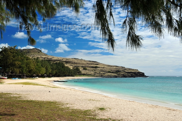 rodrigues34: Pointe Coton beach, Rodrigues island, Mauritius: beach and Casuarina trees - photo by M.Torres - (c) Travel-Images.com - Stock Photography agency - Image Bank