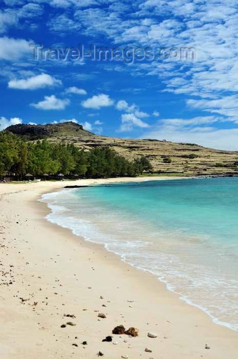 rodrigues35: Pointe Coton beach, Rodrigues island, Mauritius: a tranquil bay lined by shade trees - photo by M.Torres - (c) Travel-Images.com - Stock Photography agency - Image Bank