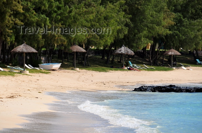 rodrigues36: Pointe Coton beach, Rodrigues island, Mauritius: beach parasols and Casuarina trees - photo by M.Torres - (c) Travel-Images.com - Stock Photography agency - Image Bank