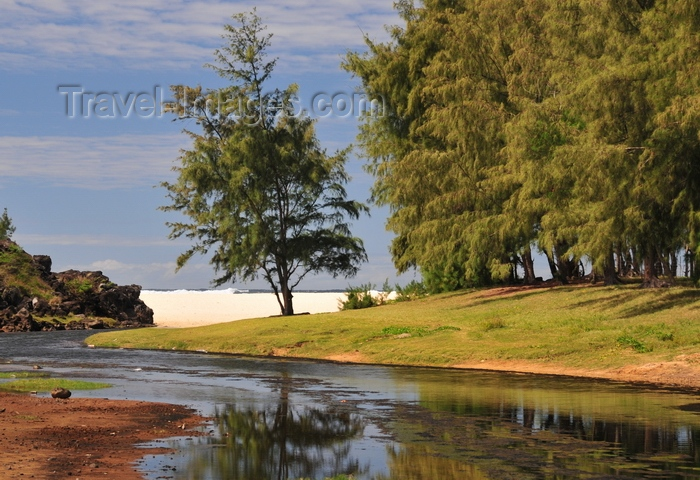 rodrigues40: Pointe Longue, Rodrigues island, Mauritius: winding stream, casuarina trees and white sand of the beach - Indian ocean on the horizon - photo by M.Torres - (c) Travel-Images.com - Stock Photography agency - Image Bank