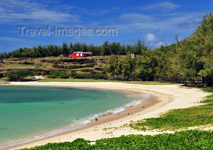 rodrigues43: Baie de l'Est, Saint François Beach, Rodrigues island, Mauritius: small bay with emerald water, lined by casuarina trees - Eastern bay - photo by M.Torres - (c) Travel-Images.com - Stock Photography agency - Image Bank