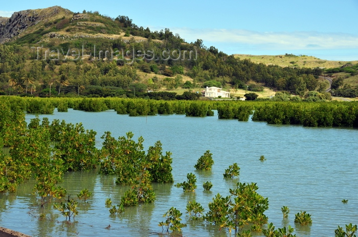rodrigues69: Baie Malgache, Rodrigues island, Mauritius: hills and mangrove - photo by M.Torres - (c) Travel-Images.com - Stock Photography agency - Image Bank