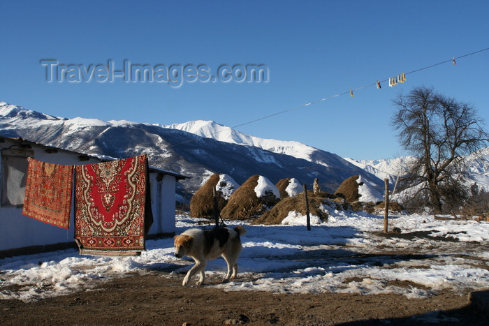 russia796: Chechnya, Russia - landscape in winter with mountains, traditional carpets, haystacks and dog - photo by A.Bley - (c) Travel-Images.com - Stock Photography agency - Image Bank