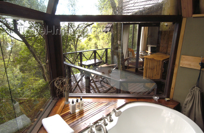 safrica164: South Africa - Phantom Forest Lodge suite, Knysna - photo by B.Cain - (c) Travel-Images.com - Stock Photography agency - Image Bank