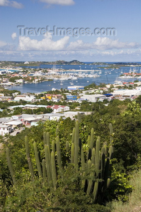 saint-martin9: Sint-Maarten - Simpson bay lagoon: from the hills, with cactus in the foreground - photo by D.Smith - (c) Travel-Images.com - Stock Photography agency - Image Bank