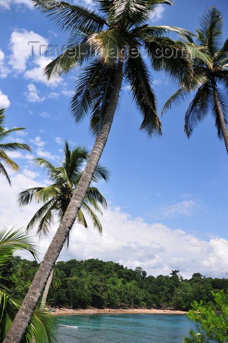 sao-tome109: Santana, Cantagalo district, São Tomé and Prícipe / STP: coconut trees over Santana cove / coqueiros sobre a enseada de Santana - photo by M.Torres - (c) Travel-Images.com - Stock Photography agency - Image Bank