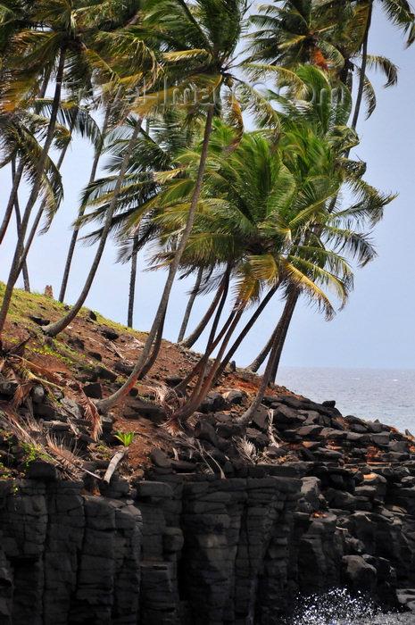 sao-tome123: Boca do Inferno, Cantagalo district, São Tomé and Prícipe / STP: windswept coconut tress on the cliff edge / coqueiros acossados pelo vento, junto à falésia - photo by M.Torres - (c) Travel-Images.com - Stock Photography agency - Image Bank