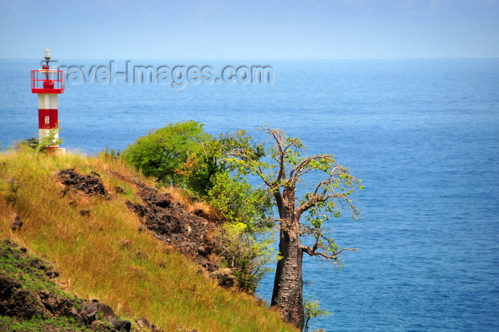sao-tome154: Lagoa Azul, Lobata district, São Tomé and Príncipe / STP: lighthouse and baobab on the edge of land / farol e embondeiro na falésia - photo by M.Torres - (c) Travel-Images.com - Stock Photography agency - Image Bank