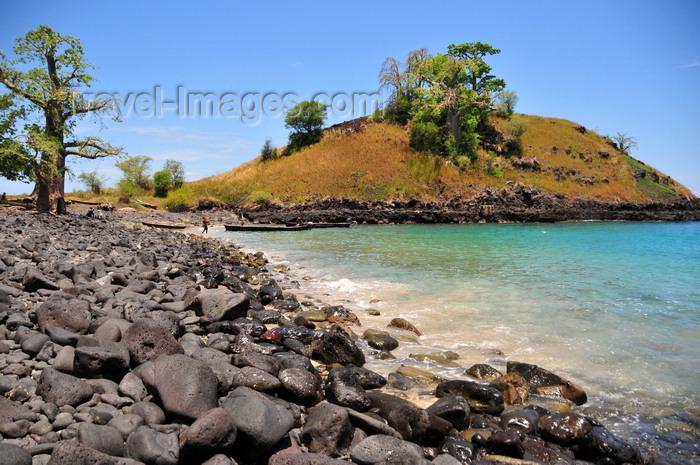 sao-tome160: Lagoa Azul, Lobata district, São Tomé and Príncipe / STP: baobab and rocky beach / imbondeiro e praia rochosa - photo by M.Torres - (c) Travel-Images.com - Stock Photography agency - Image Bank