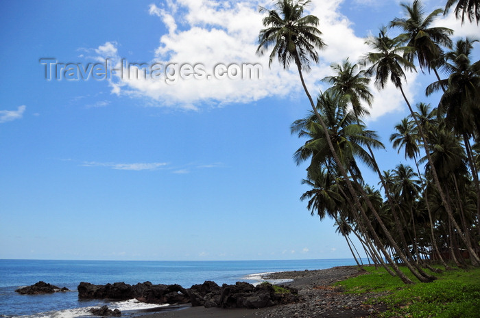 sao-tome182: Esprainha, Lembá district, São Tomé and Príncipe / STP: coconut-tree lined coast / costa e coqueiros - photo by M.Torres - (c) Travel-Images.com - Stock Photography agency - Image Bank