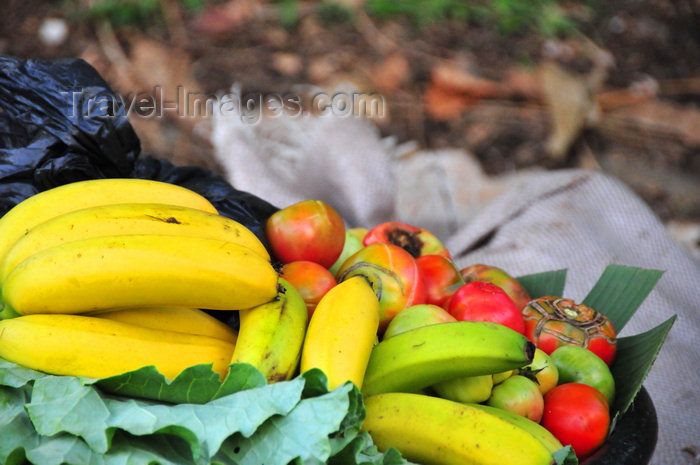 sao-tome65: Pousada, Mé-Zóchi district, São Tomé and Príncipe / STP: fruit by the road-side waiting for a buyer / fruta junto à estrada aguarda comprador - photo by M.Torres - (c) Travel-Images.com - Stock Photography agency - Image Bank
