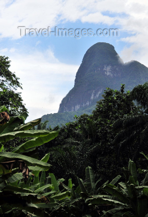 sao-tome68: Maria Fernandes peak / pico Maria Fernandes, Caué district, São Tomé and Prícipe / STP: mountain and rain forest - local superstition warns against pointing at the peak, or rain will come - phonolitic rock tower - Holocene basalt / montanha e floresta - photo by M.Torres - (c) Travel-Images.com - Stock Photography agency - Image Bank
