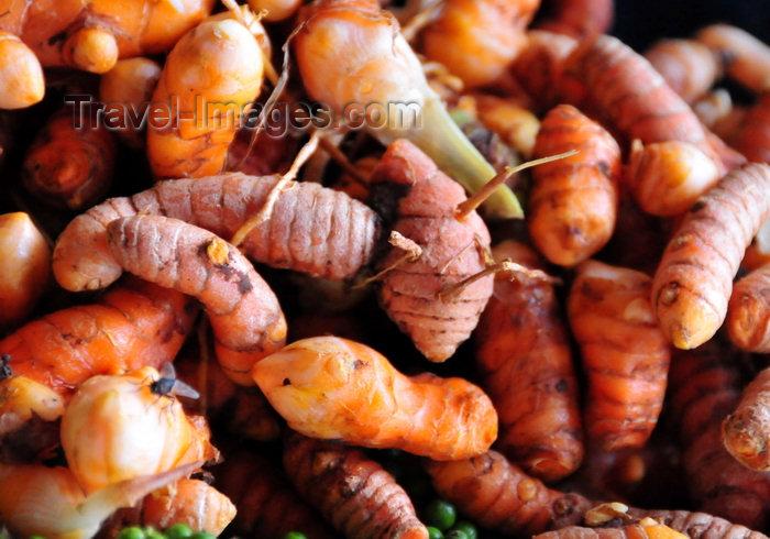 sao-tome78: São João plantation / roça São João, Caué district, São Tomé and Prícipe / STP: fresh turmeric root - Curcuma longa -  the plantation showcases local produce for sale to visitors / raízes de açafrão-da-terra / cúrcuma / turmérico / gengibre amarelo - photo by M.Torres - (c) Travel-Images.com - Stock Photography agency - Image Bank