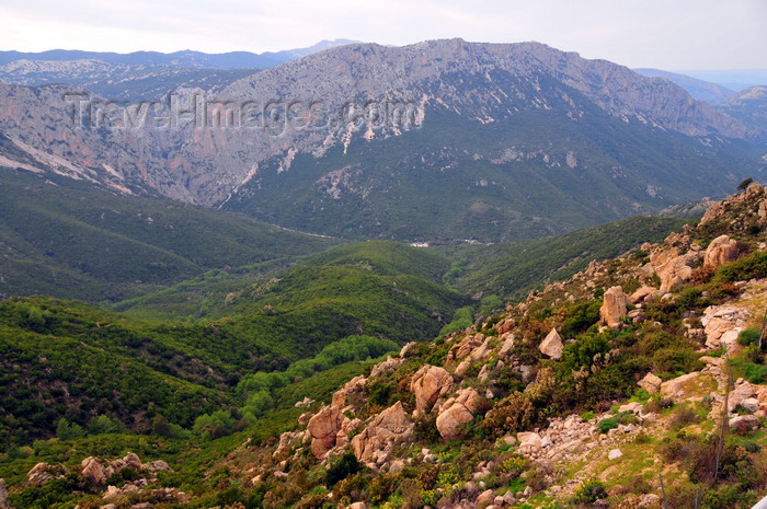 sardinia15: Dorgalia / Durgàli, Nuoro province, Sardinia/ Sardegna / Sardigna: limestone landscape - in the mountains - Supramonte mountain area - photo by M.Torres - (c) Travel-Images.com - Stock Photography agency - Image Bank