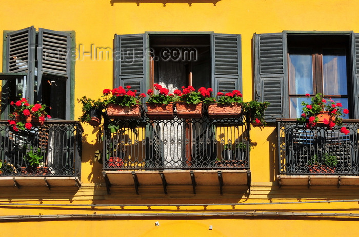 sardinia360: Cagliari, Sardinia / Sardegna / Sardigna: balconies with flower vases on Scalette Santa Chiara - French shutters - quartiere di Stampace - photo by M.Torres - (c) Travel-Images.com - Stock Photography agency - Image Bank