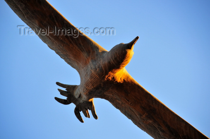 sardinia366: Cagliari, Sardinia / Sardegna / Sardigna: the impossible statue of a seagull in flight - Via Roma - Calata Roma - quartiere Marina - photo by M.Torres - (c) Travel-Images.com - Stock Photography agency - Image Bank