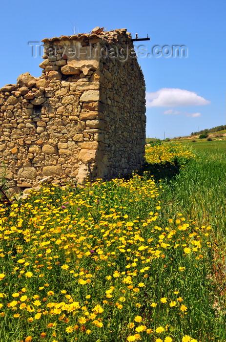 sardinia58: Las Plassas / Is Pratzas, Medio Campidano province, Sardinia / Sardegna / Sardigna: ruined house in a field of flowers - photo by M.Torres - (c) Travel-Images.com - Stock Photography agency - Image Bank