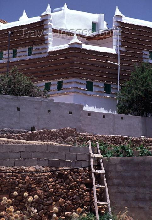 saudi-arabia17: Saudi Arabia - Asir province - Abha: mud village - ladder on wall (photo by F.Rigaud) - (c) Travel-Images.com - Stock Photography agency - Image Bank