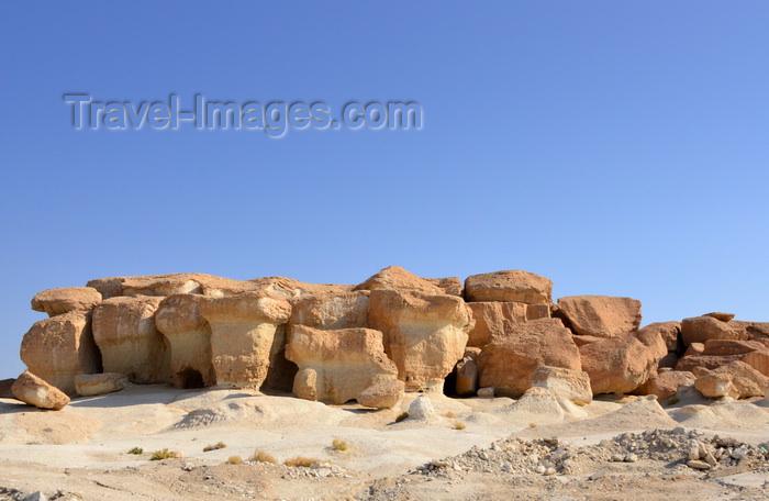 saudi-arabia62: Saudi Arabia - Riyadh / Riade / RUH: camel trader at the camel market (photo by F.Rigaud) - (c) Travel-Images.com - Stock Photography agency - Image Bank