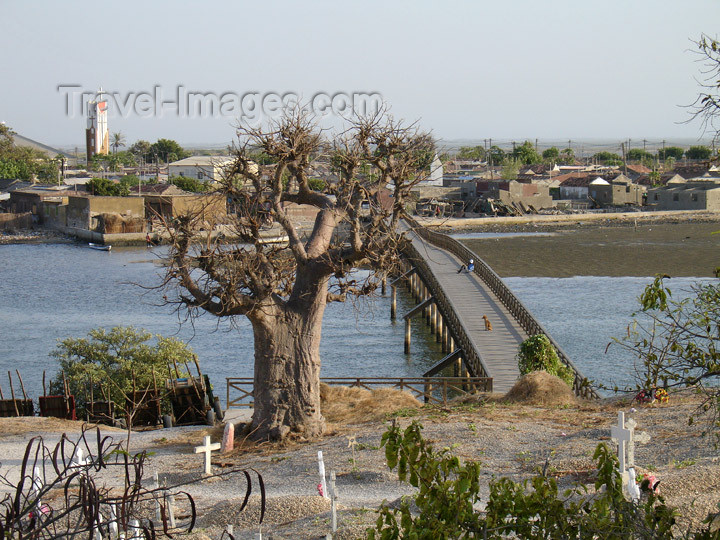 senegal103: Senegal - Joal-Fadiouth: shell village- view of the town from cemetery hill - baobab - photo by G.Frysinger - (c) Travel-Images.com - Stock Photography agency - Image Bank