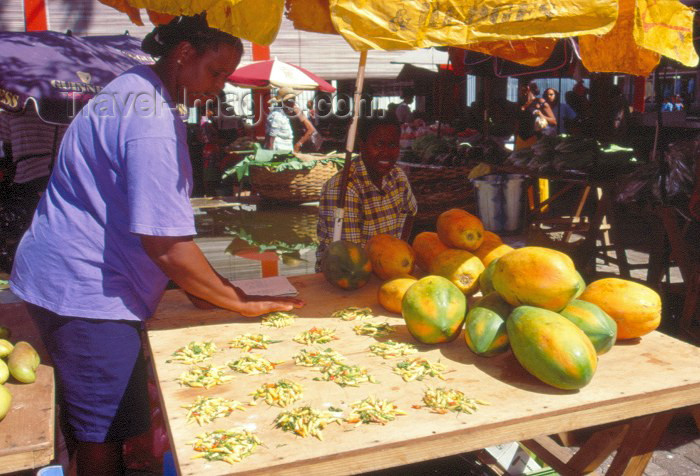seychelles2: Seychelles - Mahe island: Victoria - coconuts at the market - photo by F.Rigaud - (c) Travel-Images.com - Stock Photography agency - Image Bank
