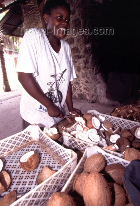 seychelles65: Seychelles - La Digue island: preparing coconuts - photo by F.Rigaud - (c) Travel-Images.com - Stock Photography agency - Image Bank