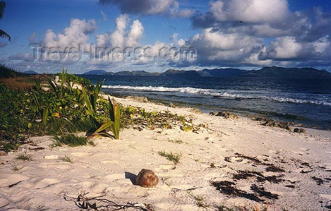 seychelles68: Seychelles - Aldabra atoll (Unesco World Heritage site): on the beach (photo by G.Frysinger)) - (c) Travel-Images.com - Stock Photography agency - Image Bank
