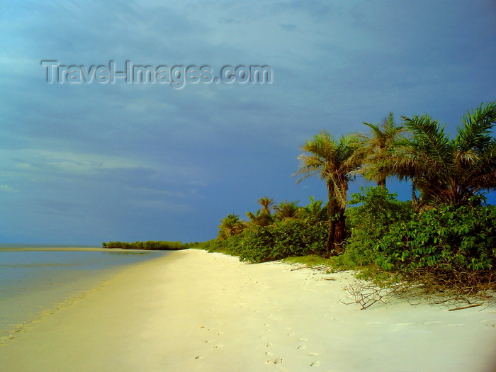 sierra-leone24: Turtle Islands, Southern Province, Sierra Leone: deserted beach - photo by T.Trenchard - (c) Travel-Images.com - Stock Photography agency - Image Bank