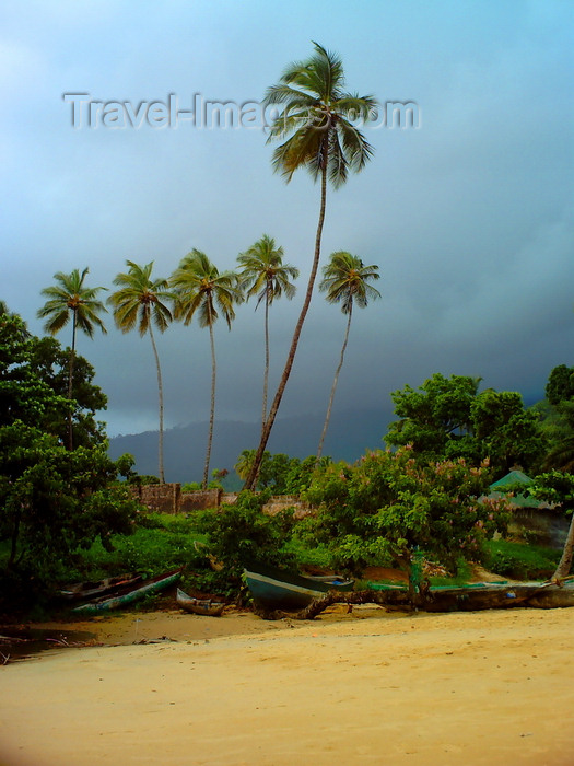 sierra-leone35: Lakka Beach, Freetown Peninsula, Sierra Leone: storm clouds behind palm trees - photo by T.Trenchard - (c) Travel-Images.com - Stock Photography agency - Image Bank
