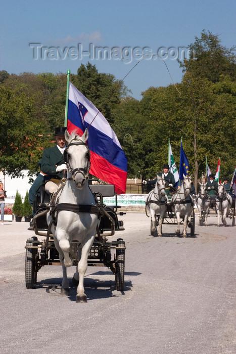 slovenia127: Slovenia - Lipica / Lipizza - Goriska region: Lipica stud farm - Combined driving event - the dressage test - Carriage parade - Slovenian flag - photo by I.Middleton - (c) Travel-Images.com - Stock Photography agency - Image Bank