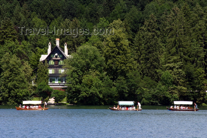 slovenia160: Slovenia - Row of Pletna boats on Lake Bled - forest - photo by I.Middleton - (c) Travel-Images.com - Stock Photography agency - Image Bank