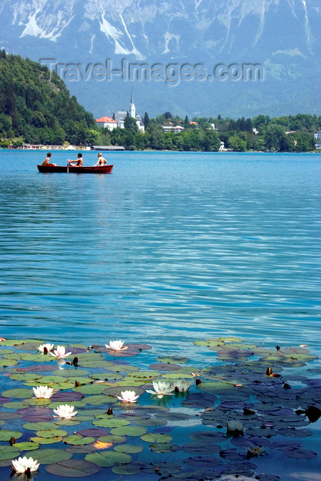 slovenia167: Slovenia - People rowing across Lake Bled - photo by I.Middleton - (c) Travel-Images.com - Stock Photography agency - Image Bank