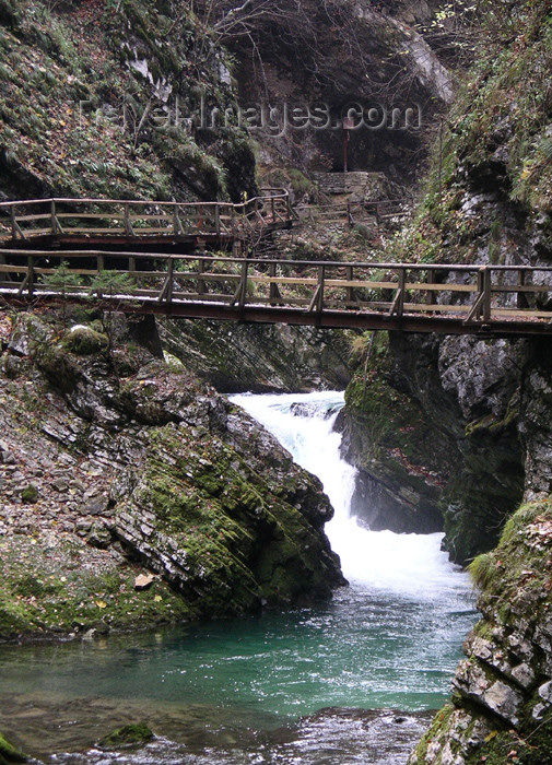 slovenia30: Slovenia - Bled: Vintgar gorge - photo by R.Wallace - (c) Travel-Images.com - Stock Photography agency - Image Bank