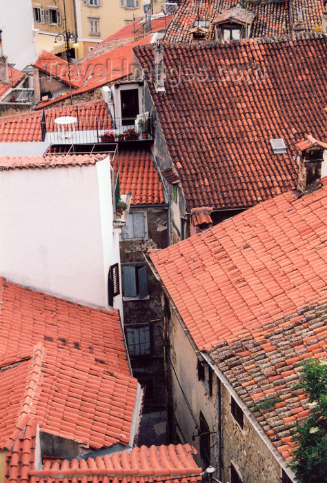 slovenia412: Slovenia - Piran: red tiles - roofs of the old town - photo by M.Torres - (c) Travel-Images.com - Stock Photography agency - Image Bank