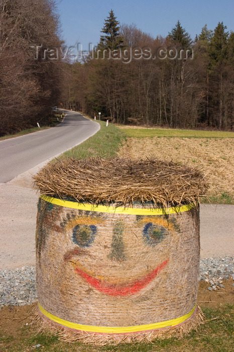 slovenia517: Making hay with a smile - Prekmurje, Slovenia - photo by I.Middleton - (c) Travel-Images.com - Stock Photography agency - Image Bank