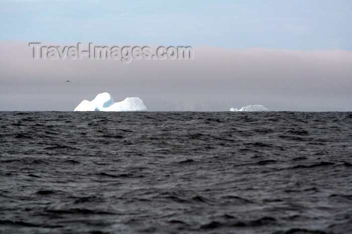 south-georgia178: South Georgia - icebergs - Antarctic region images by C.Breschi - (c) Travel-Images.com - Stock Photography agency - Image Bank