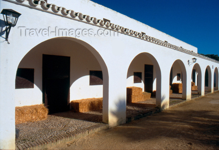 spai279: Spain - Cadiz - Stables of an Andalusian farm - photo by K.Strobel - (c) Travel-Images.com - Stock Photography agency - Image Bank
