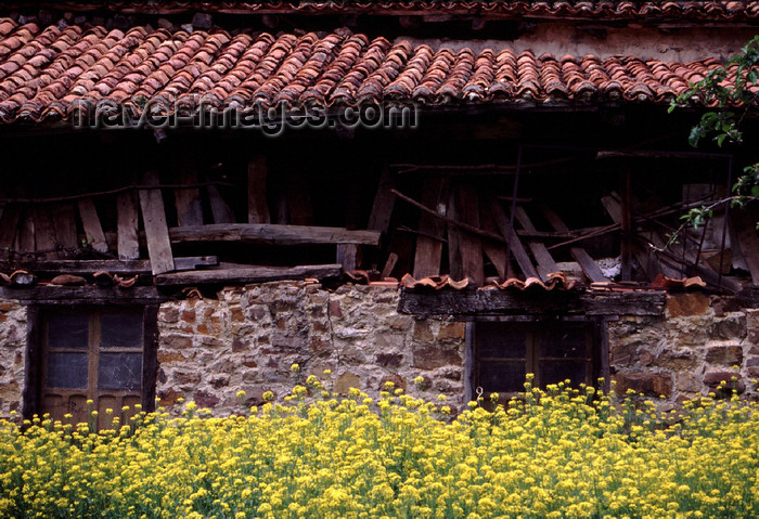 spai413: Spain - Cantabria - Espinama - Picos de Europa National Reserve - ruined house and flowers - photo by F.Rigaud - (c) Travel-Images.com - Stock Photography agency - Image Bank