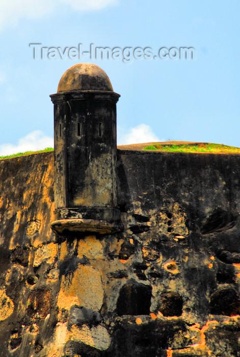 Sri Lanka Gon Badu Submited Images Pic