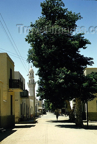 sudan6: Sudan - Wadi Halfa: street and mosque (photo by Galen Frysinger) - (c) Travel-Images.com - Stock Photography agency - Image Bank
