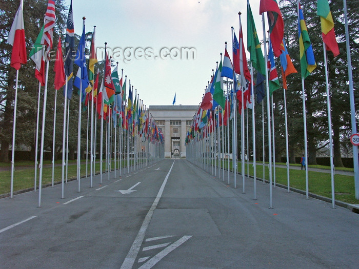 switz143: Switzerland / Suisse / Schweiz / Svizzera - Geneva / Genève / Genf / Ginevra / GVA: UN - flags at the entrance / ONU - entree - photo by C.Roux - (c) Travel-Images.com - Stock Photography agency - Image Bank