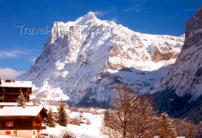 switz63: Switzerland / Suisse / Schweiz / Svizzera - Grindelwald (Bern canton): in the winter - photo by P.Willis - (c) Travel-Images.com - Stock Photography agency - Image Bank