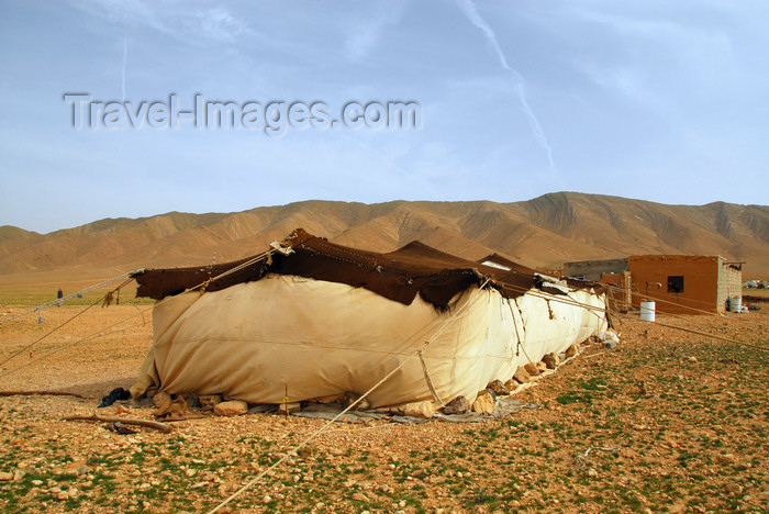 syria81: Homs governorate, Syria: Bedouin tent - photo by M.Torres / Travel-Images.com - (c) Travel-Images.com - Stock Photography agency - Image Bank
