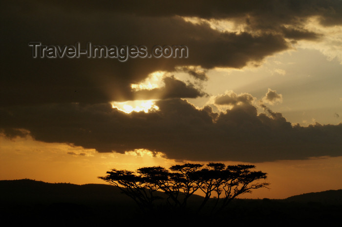 tanzania181: Tanzania - Sunset over Serengeti National Park - photo by A.Ferrari - (c) Travel-Images.com - Stock Photography agency - Image Bank