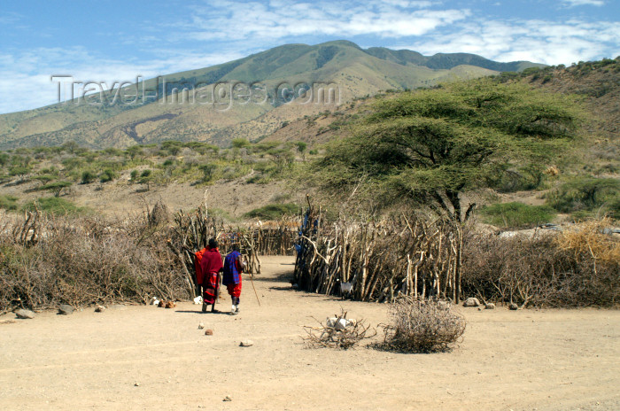 tanzania183: Tanzania - entering a Masai village near Ngorongoro Crater - photo by A.Ferrari - (c) Travel-Images.com - Stock Photography agency - Image Bank