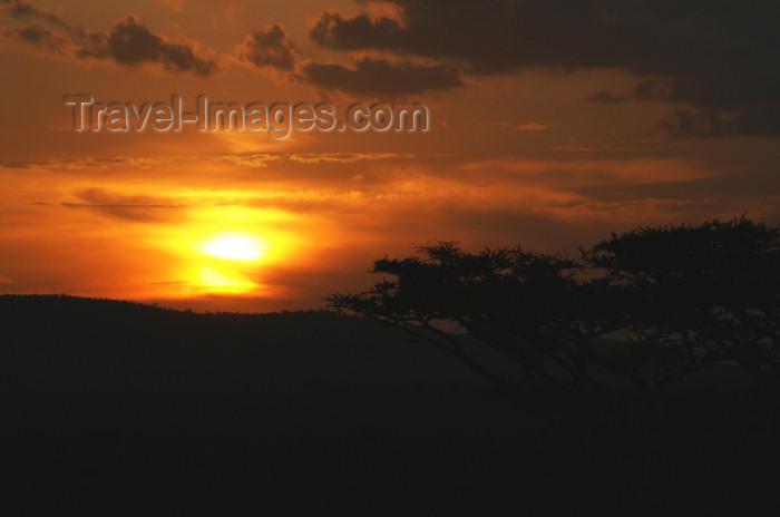 tanzania184: Tanzania - Serengeti National Park: sunset - photo by A.Ferrari - (c) Travel-Images.com - Stock Photography agency - Image Bank