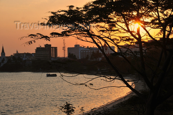 tanzania209: Dar es Salaam, Tanzania: sunset on the bay - acacia tree and the waterfront - photo by M.Torres - (c) Travel-Images.com - Stock Photography agency - Image Bank