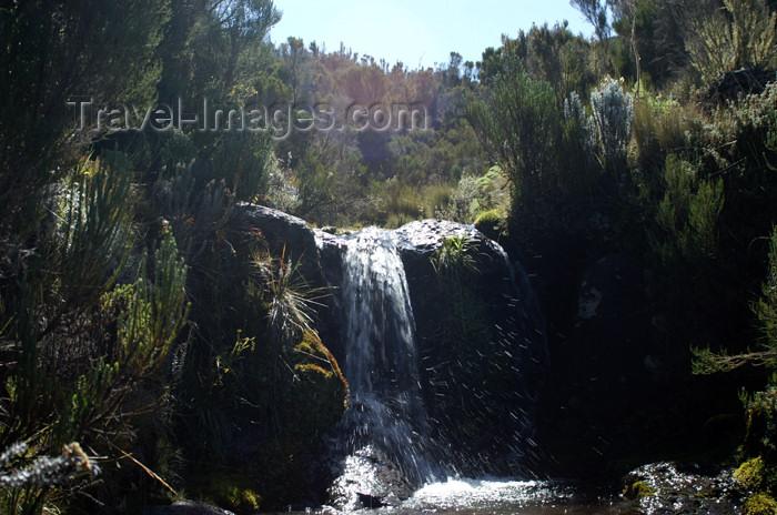 tanzania44: Tanzania - Kilimanjaro NP: Marangu Route - day 2 - waterfall in the moorlands - photo by A.Ferrari - (c) Travel-Images.com - Stock Photography agency - Image Bank